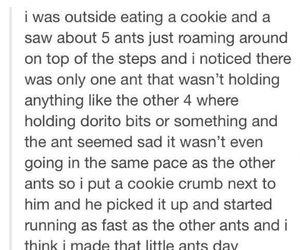 ant, cookie, and post image