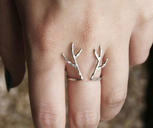 antlers, winter, and deer image