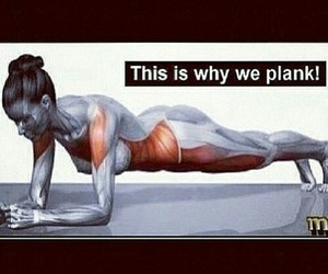 fitness, workout, and plank image
