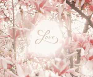 flowers, pastel, and love image