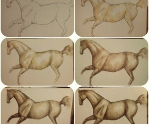 art, horse, and how to draw a horse image