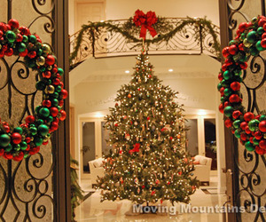 christmas, lights, and luxury image
