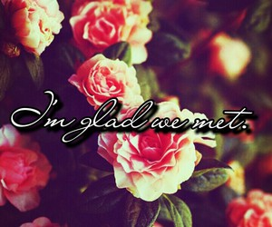beautiful, quote, and roses image