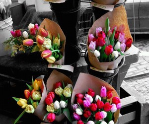 flowers, tulips, and bouquet image