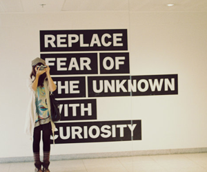 quote, fear, and curiosity image