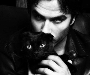 black and white, cat, and ian somerhalder image