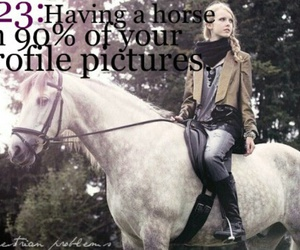 equestrian and horses image