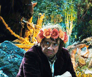 bilbo, burglar, and flower image