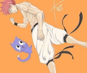 salamander, fairy tail, and natsu image