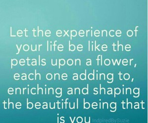 flowers, petals, and you image