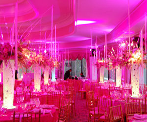 fancy, pink, and restaurant image