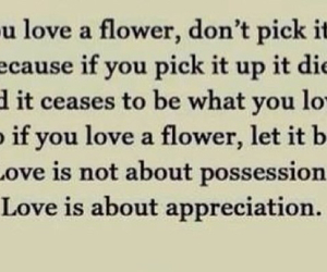 quote, love, and flowers image
