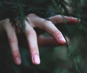 hand, nature, and forest image