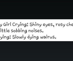 crying, walrus, and pretty girls image