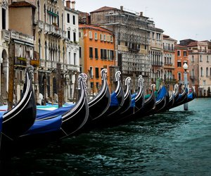 city, venice, and gonads image