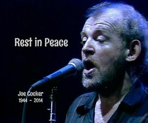 death, hippies, and Joe Cocker image