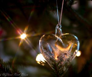 christmas, family, and heart image