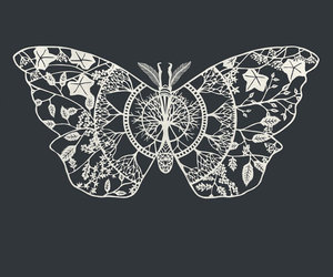 butterfly, art, and cool image