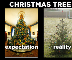 new year, reality, and tree image