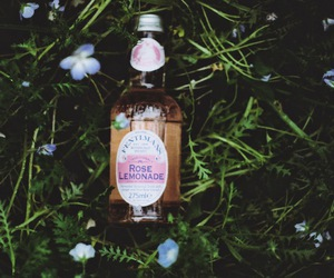 british, lemonade, and britain image