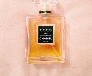 coco, chanel, and girl image