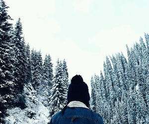 christmas, december, and folk image