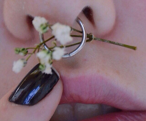 baby's breath, bambi, and pale skin image