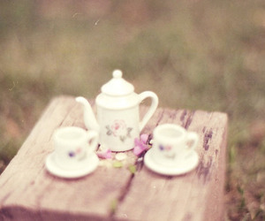 tea, cup, and photography image
