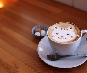 cat, coffee, and kitty image