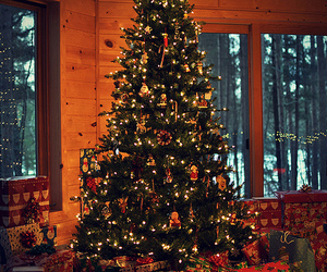 christmas, christmas tree, and winter image