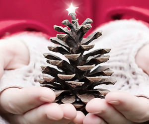 christmas and hands image