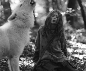wolf, nature, and forest image