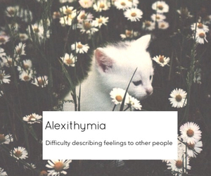 cat, flowers, and alexithymia image