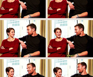 Shailene Woodley, sheo, and theo james image