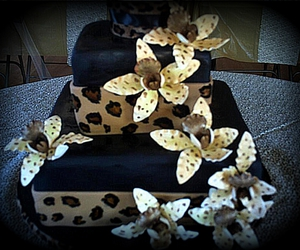cake, leopard print, and photography image