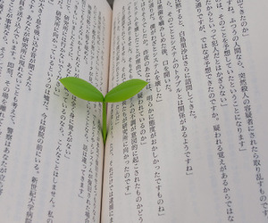 book, japanese, and plant image