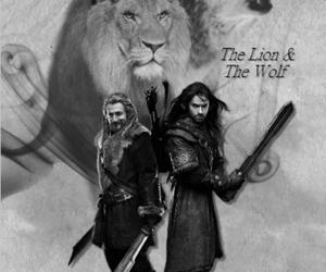 kili, fili, and the lion image