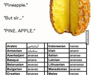 funny, pineapple, and english image