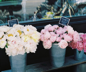 flowers, peonies, and flower shop image