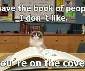 funny, grumpy cat, and book image