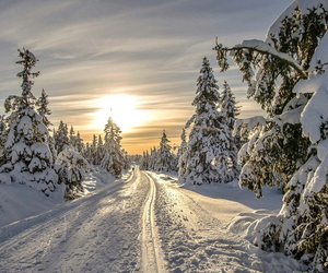 beautiful, cold, and norway image