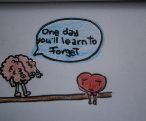 brain, forget, and heart image