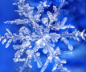 cold and snow image