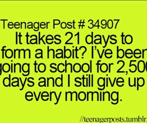 school, funny, and habits image