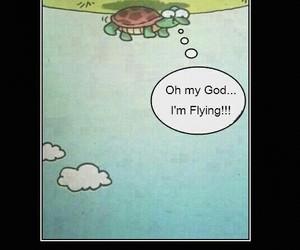 optimism, turtle, and life image