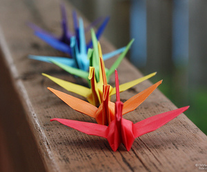 origami and Paper image