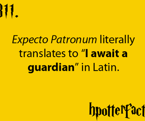 harry potter, latin, and expecto patronum image