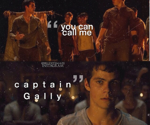 gally, thomas, and the maze runner image