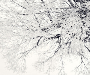 cold, iphone, and snow image