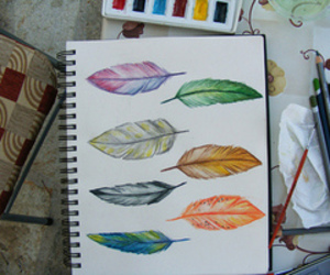 feather, art, and drawing image